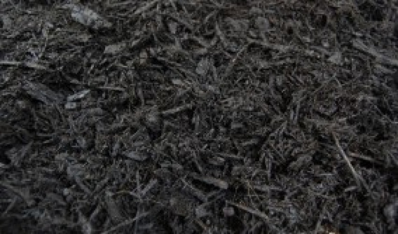 Black Pine Mulch