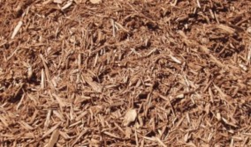 Natural Pine Mulch